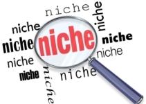 finding-a-niche